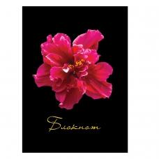 Блокнот МАЛЫЙ ФОРМАТ 110х147 мм А6, 80 л., твердый переплет, ламинированная обложка, клетка, STAFF, 'Красный цветок на черном', 127212