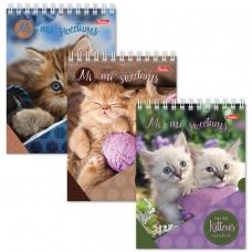 Блокнот А6, 40 л., гребень, лакированная обложка, HATBER, 'Милые котята', 110х145 мм, 40Б6B1гр, В12291