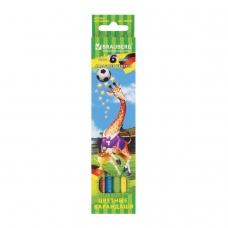 Карандаши цветные BRAUBERG 'Football match', 6 цветов, заточенные, картонная упаковка, 180521