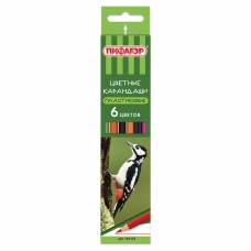 Карандаши цветные ПИФАГОР 'ЛЕСНЫЕ ЖИТЕЛИ', 6 цветов, пластиковые, классические заточенные, 181333