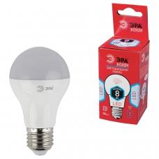 Лампа светодиодная ЭРА, 8 55 Вт, цоколь E27, грушевидная, холодный белый свет, 25000 ч., LED smdA55\60-8w-840-E27ECO, A60-8w-840-E27