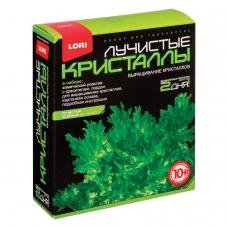 Набор для изготовления лучистых кристаллов 'Зелёный кристалл', реагент, краситель, основа, LORI, Лк-003